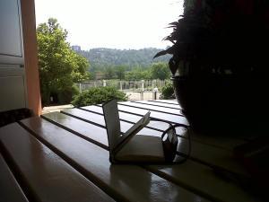 Writing in the garden
